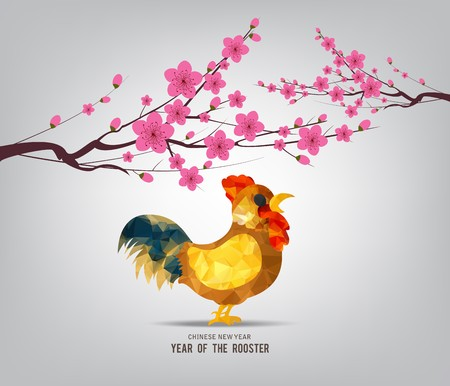 Blossom chinese new year 2017 rooster and background Çizim