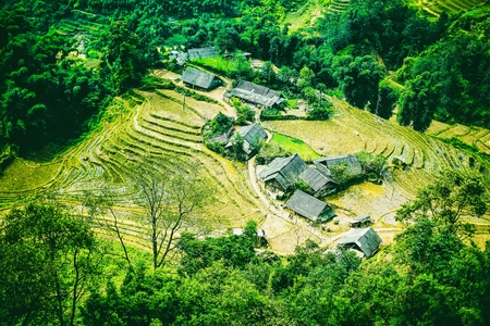 Rice field terraces at Sapa Vietnam Stock Photo