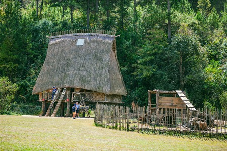 cu: DALAT, VIETNAM - February 17, 2017: Cu Lan village at Dalat countryside, hotel and holiday resort among pine jungle, camp on grass field, an eco tourism in nature reserse