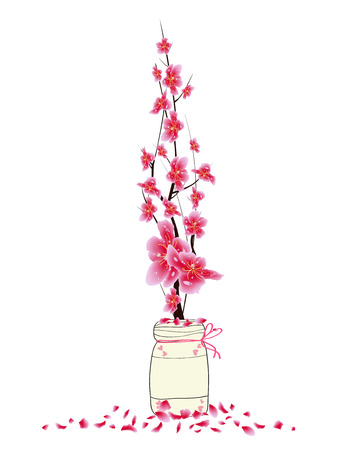 Sakura flowers spring with bird. Cherry blossom isolated white background. Chinese new year Illustration