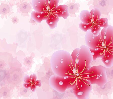 green lantern: Chinese new year background blooming sakura branches