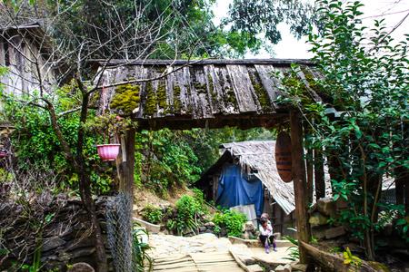 Árbol de flor de ciruelo en frente de la casa de Hmong