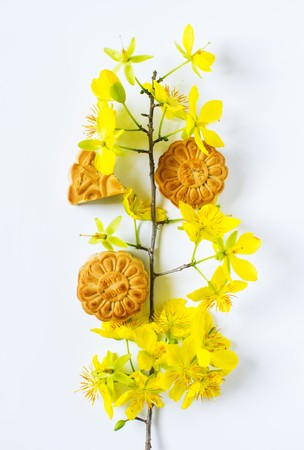 Mooncake and apricot blossom, food for Chinese mid autumn festival. Isolated on white background