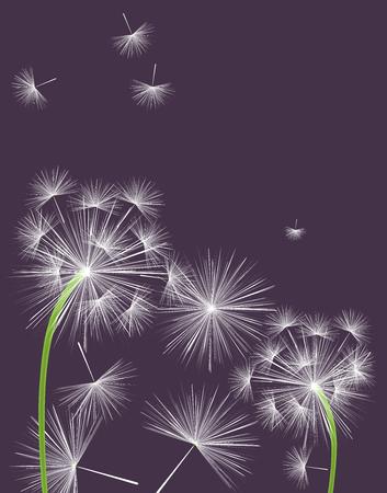 Flying dandelion seeds background design