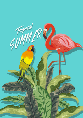 Summer tropical background. Flamingo bird with palm and banana leaves, parrot Vector illustration.