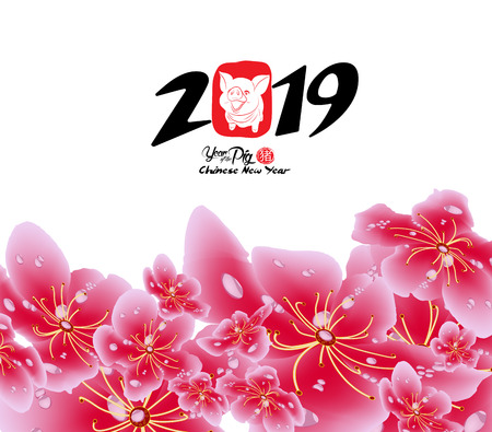 Sakura flowers background. Cherry blossom and lantern isolated white background. Chinese new year (hieroglyph Pig)