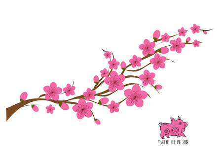 Japan cherry blossom branching tree vector illustration. Japanese invitation card with asian blossoming plum branch Illustration