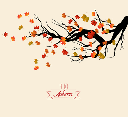 Hello autumn. Autumn landscape with autumn leaves on the branches of trees