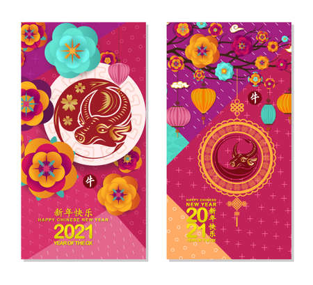 Chinese new year 2021, background with Ox, lantern and plum blossom (Chinese translation Happy Chinese New Year, Year of Ox)