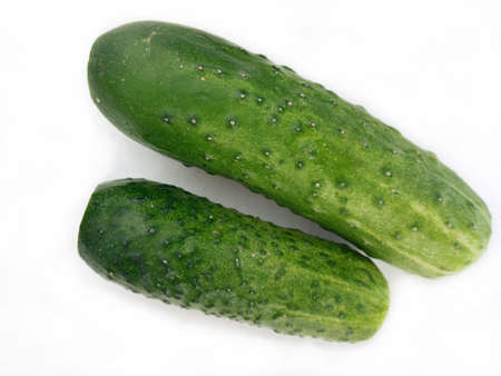 repast: Two green cucumbers
