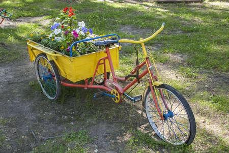 carretilla: El césped original con flores en el verano Foto de archivo