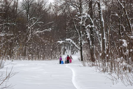 Several families with children on walk in the winter wood Stock Photo