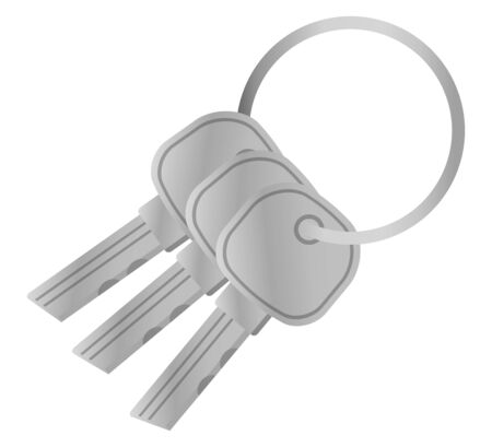 Silver keys isolated vector image