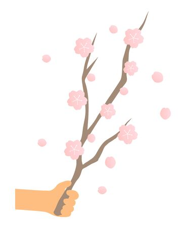with cherry branches