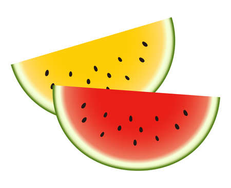 Cut watermelons isolated vector illustration.