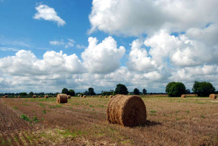 haystacks: A field with haystacks and beautiful clouds in France