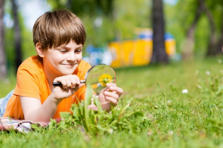 investigating: boy in the park with a magnifying glass considers plants