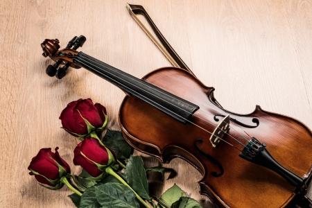 Violin, rose and music books, still life