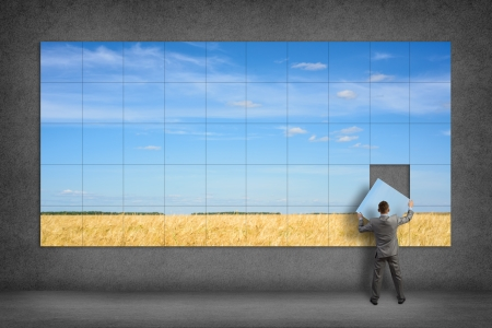 complete: businessman collects the image of a wheat field and blue sky