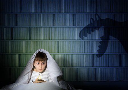 boogie: image of a boy under the covers with a flashlight the night afraid of ghosts