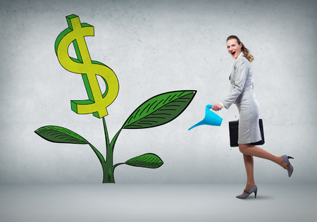 pot of money: Businesswoman with can watering dollar money tree