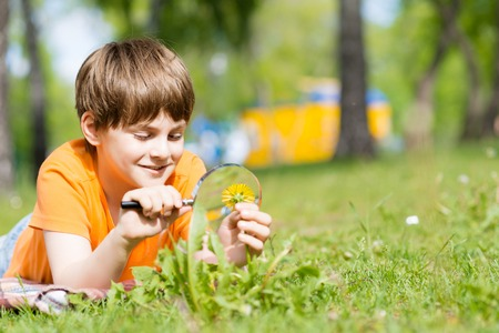 boy in the park with a magnifying glass considers plants photo