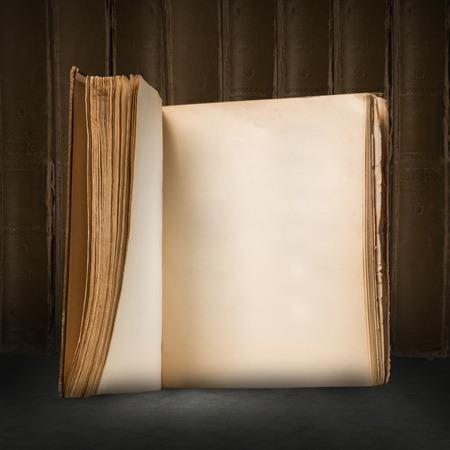 빈 페이지와 함께 오래 된 열린 된 책의 이미지를 닫습니다 스톡 콘텐츠