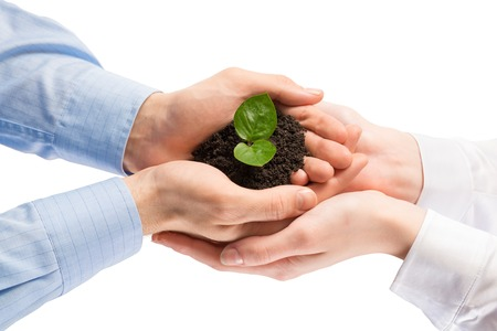 Eenheid van ondernemers te beschermen kleine spruit met handen Stockfoto - 35564896