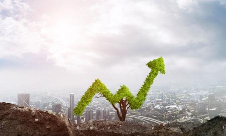 diagrama de arbol: la inversión correcta para obtener ingresos Foto de archivo