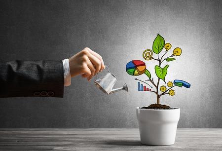 Getrokken inkomensboom in witte pot voor besparingen van bedrijfsinvesteringen en geld verdienen