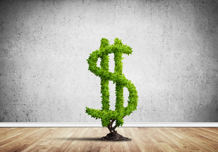 Market growth and success as growing green tree in shape of dollar Stok Fotoğraf