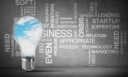 Glass lightbulb with skyscape inside with business related terms on dark grey wall on background. 3D rendering.