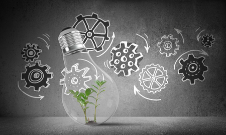 Lightbulb with green plant inside placed against sketched gear mechanism on grey wall on background. 3D rendering. Stock Photo