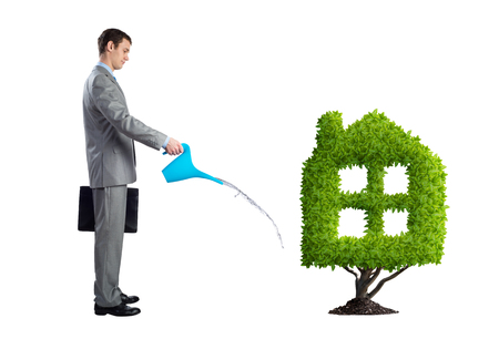 Businessman watering green plant in shape of house isolated on white background. Green and eco friendly technology. Business development to success. Real estate company growth. Imagens