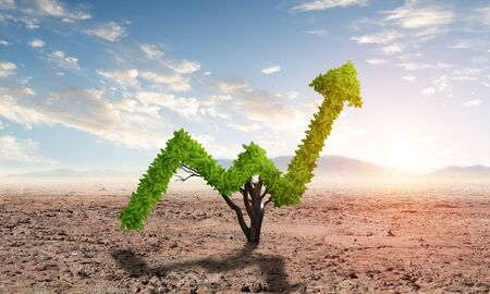 Green plant in shape of of grow up trend in desert. Business analytics and statistics. Friendly ecosystem for business and investment. Nature landscape with dry soil and blue sky. Financial progress Stok Fotoğraf