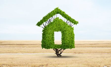 Green plant in shape of house grows at field. Eco friendly house concept. Nature landscape with dry grass and blue sky. Green building technology and architecture design. Investment in real estate. Stockfoto