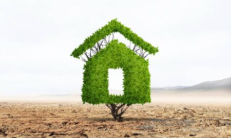 Green plant in shape of house grows in desert. Nature landscape with dry soil and blue sky. Green and eco friendly building technology and architecture design. Investment in real estate presentation Stockfoto