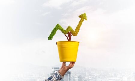 Green plant in shape of grow up trend in yellow pot. Business analytics and statistics. Friendly ecosystem for business and investment. Human hand holding pot with green plant. Financial progress