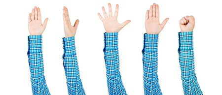 Woman hands showing various gestures. Voting, clenched fist and spread fingers. Human hand gesturing signs isolated on white background. Female raised arm presenting popular gestures. Banco de Imagens