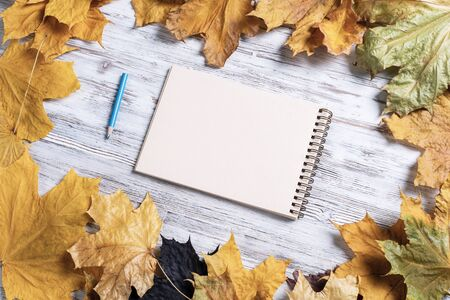 Spiral sketchbook and pen lies on vintage wooden desk with bright foliage. Flat lay with autumn leaves on white wooden surface. Blank notepad for drawing with copy space. Creative space and artwork. 免版税图像