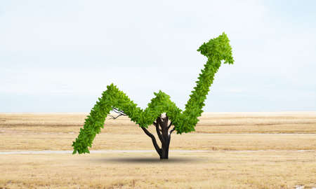 Green plant in shape of of grow up trend at dry field. Business analytics and statistics. Friendly ecosystem for business and investment. Nature landscape with meadow and blue sky. Financial progress