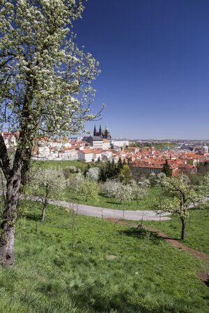 city park boat house: Prague and Prague castle vertical view from Petrin Hill Stock Photo