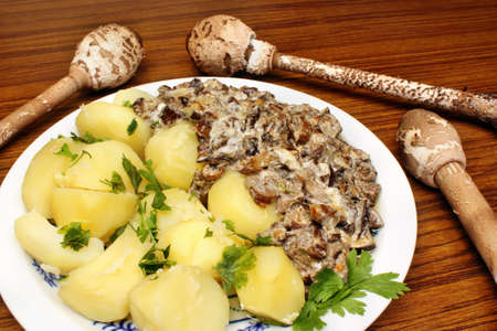 Parasol mushroom and mushroom sauce with potatoes photo