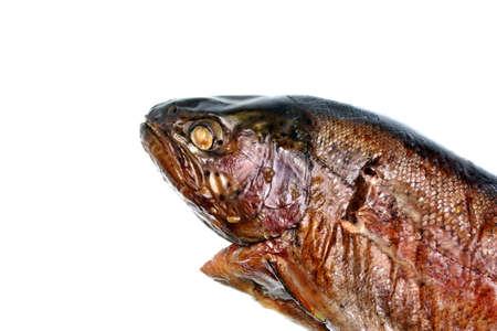 salmonidae: Fish smoked trout on white background Stock Photo