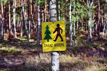 infringement: Danger in the forest