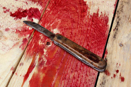 Blood and knife murder evidence