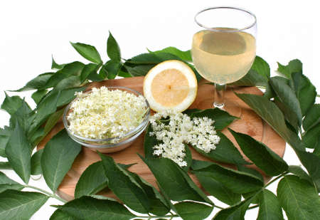 Health drink made from elderberry flowers photo