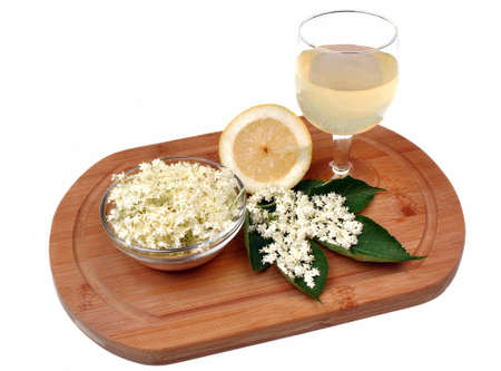 Health drink made from elderberry flowers on a white  photo