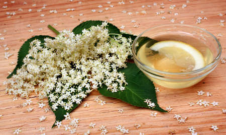 Elderberry flowers  on a wooden table photo