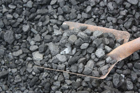 extracting: Miner is picking up coal with shovel Stock Photo